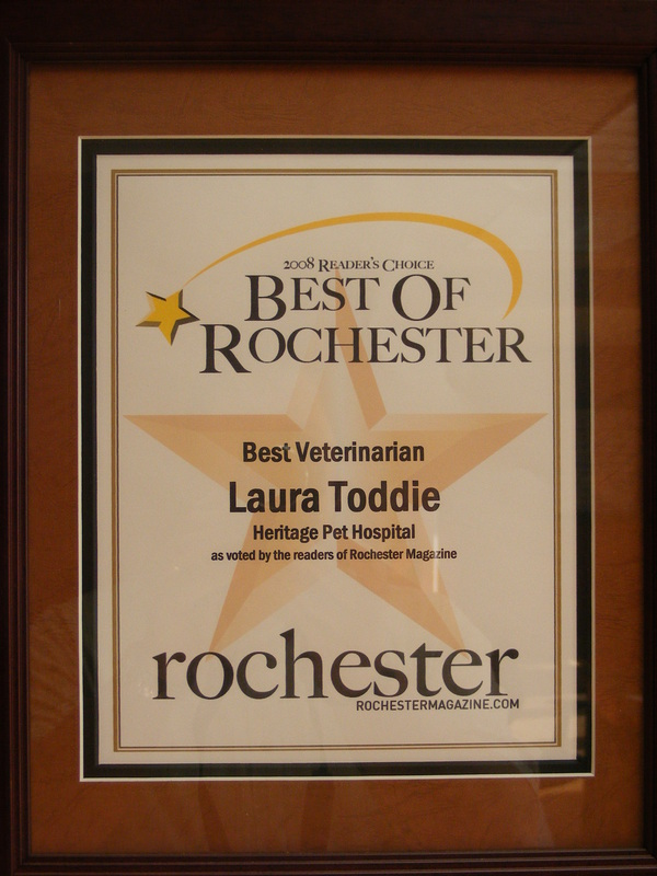 award Laura Toddie best veterinarian