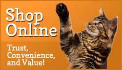 online store cat image